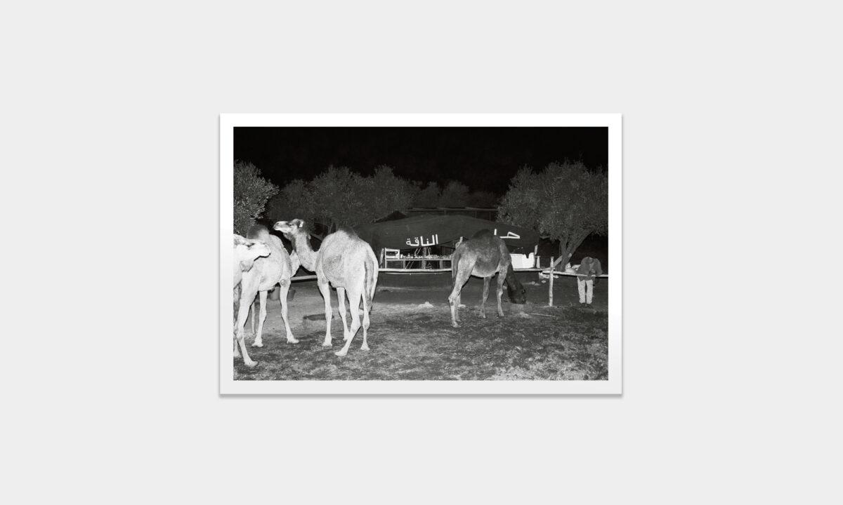 Thsi_Orient_prints_charity_Manuel_Nieberle_01