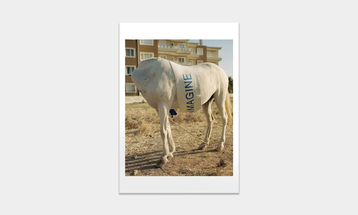 Thsi_Orient_prints_charity_fabian_frinzel_01
